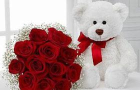 I Love You Bear دبدوب انا أحبك