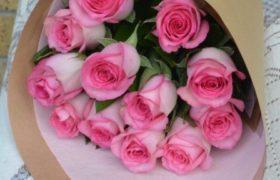 Pink Roses ورود زهرية