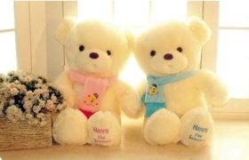 Happy for Lovers Bear (Blue/Pink) (دبدوب المحبين (أزرق أو زهري