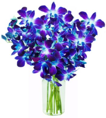 Purple Orchids Bouquet بوكيه بيربل اوركيد