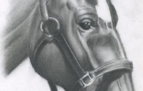 Charcoal Drawing رسم بالفحم