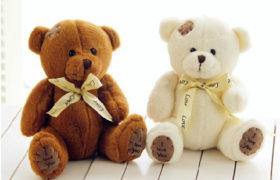 Love Teddy Bear (White/Brown) (دبدوب الحب (أبيض أو بني