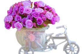 Wedding Flowers Decoration Bicycle عجلة الورود زينه زفاف