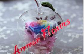 Colorful Immortal Flower الورده الاسطورية الملونه (لا تذبل)
