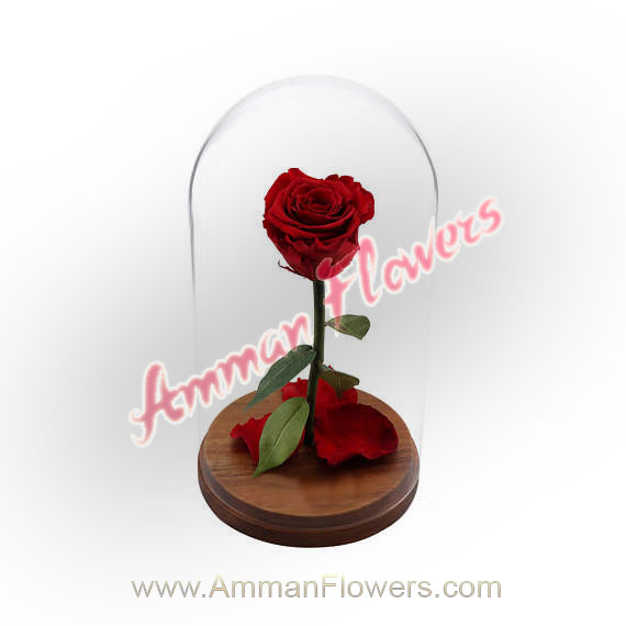 How To Order An Online Flower Delivery By Amman Flowers