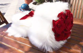 Feather Roses Bouquet بوكيه فيذر روزز
