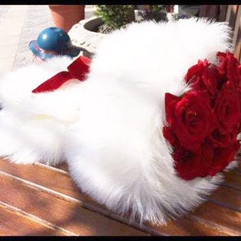 Feather Roses Bouquet بوكيه فيذر روزز