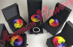 Colorful Immortal Flower w/Box الورده الاسطورية الملونه مع بوكس (لا تذبل)