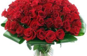 100 Roses Bouquet باقة 100 وردة