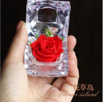 Red Immortal Flower w/Box الورده الاسطورية الحمراء مع بوكس (لا تذبل)
