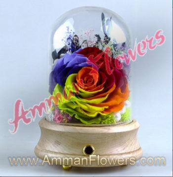 Colored Immortal Flower w/Bluetooth Speaker الورده الاسطورية الملونه (لا تذبل) مع سماعة بلوتوث (Copy)