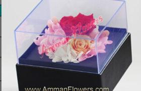3 Immortal Roses w/Box 3 ورود اسطورية ملونه مع بوكس (لا تذبل )