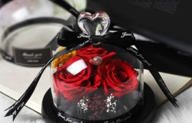 3 Red Immortal Flowers ورود اسطورية حمراء مع فازه (لا تذبل)